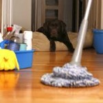 Canyon Lake house Cleaning Service18